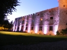 LED lighting of the castle wall of the orchard for a wedding party