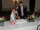 1th September - Daniel e John - wedding parties in italy - cutting cake